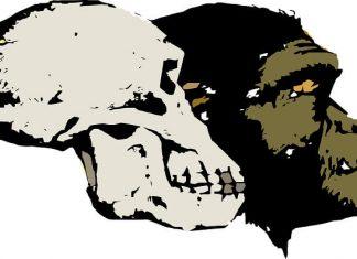 hominidos más antiguos