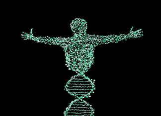 manipulación genética del ser humano