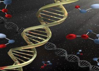 modificación genética de bebés